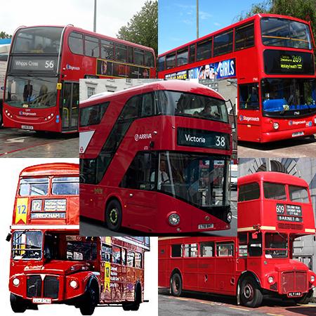 4 and half Buses